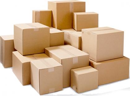 Caja básica | productos
